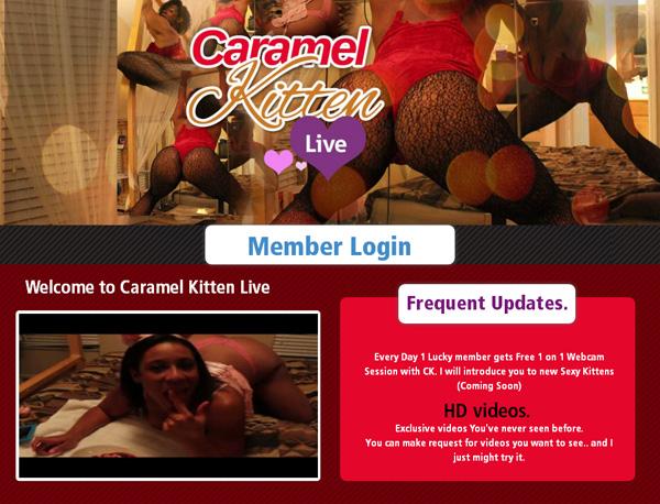 Caramel Kitten Live Free Account Password